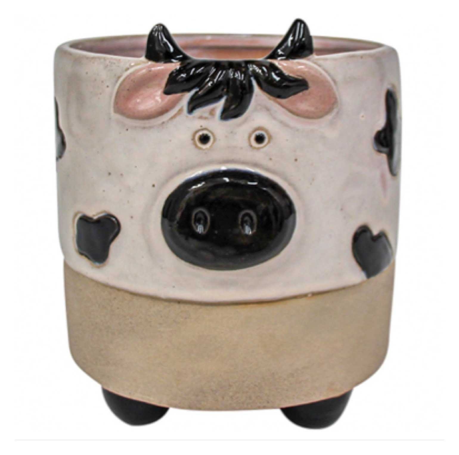 Cow Pot Plant Garden | The Renmy Store