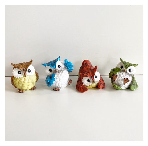 Owl Set of 4 Cheeky Colours
