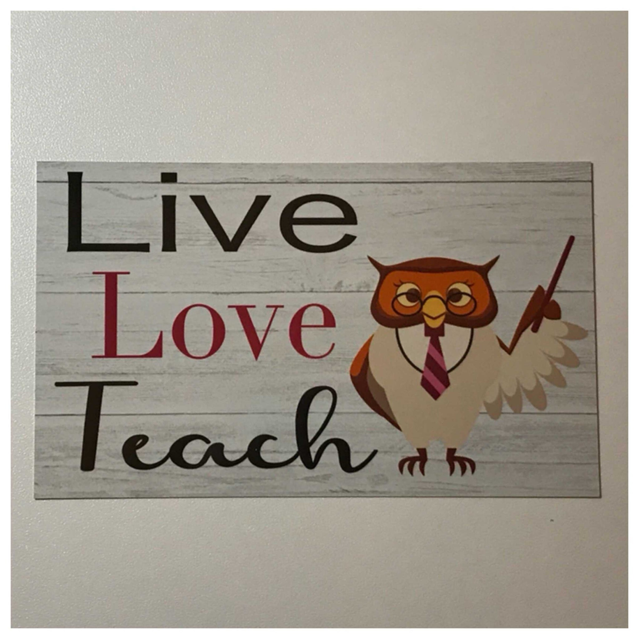 Owl Live Love Teach Sign Wall or Hanging Teacher School Gift Idea Learning