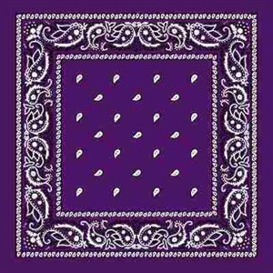 purple assorted bandana