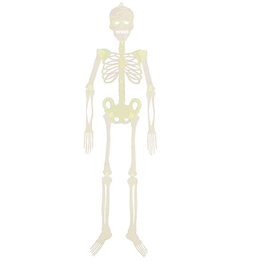 Glow in the dark hanging skeleton