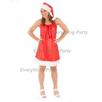 Mrs Claus Santa Costume