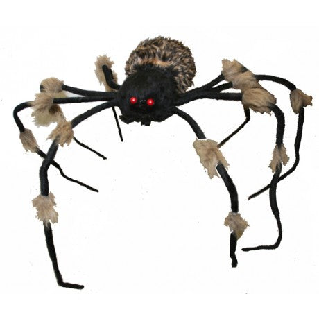 halloween creepy spider