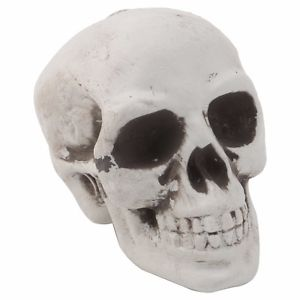 Halloween mini skull decoration
