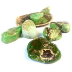 Nature's Treasures Chrysoprase