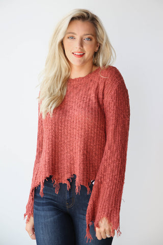 cat fight shredded sweater