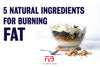 5 Best Natural Ingredients for Fat-Burning