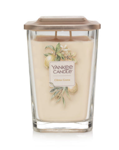 Citrus Grove Large 2-Wick Square Candle