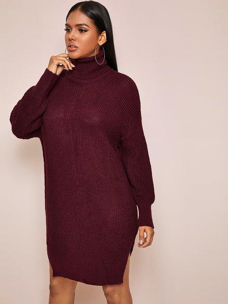 Totally Bold Turtleneck Sweater Dress
