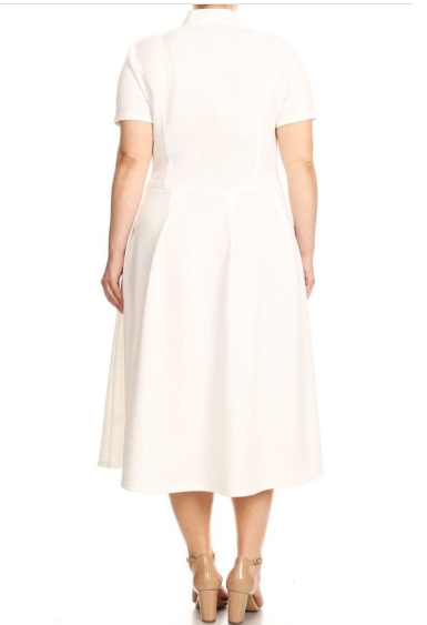 Full Of Flare Elegant Dress (White)