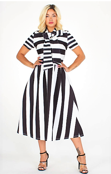 Full Of Flare Elegant Dress (Stripes)