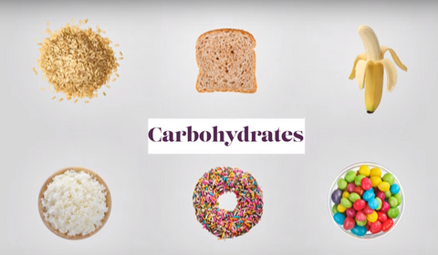 Carbohydrates and Cholesterol