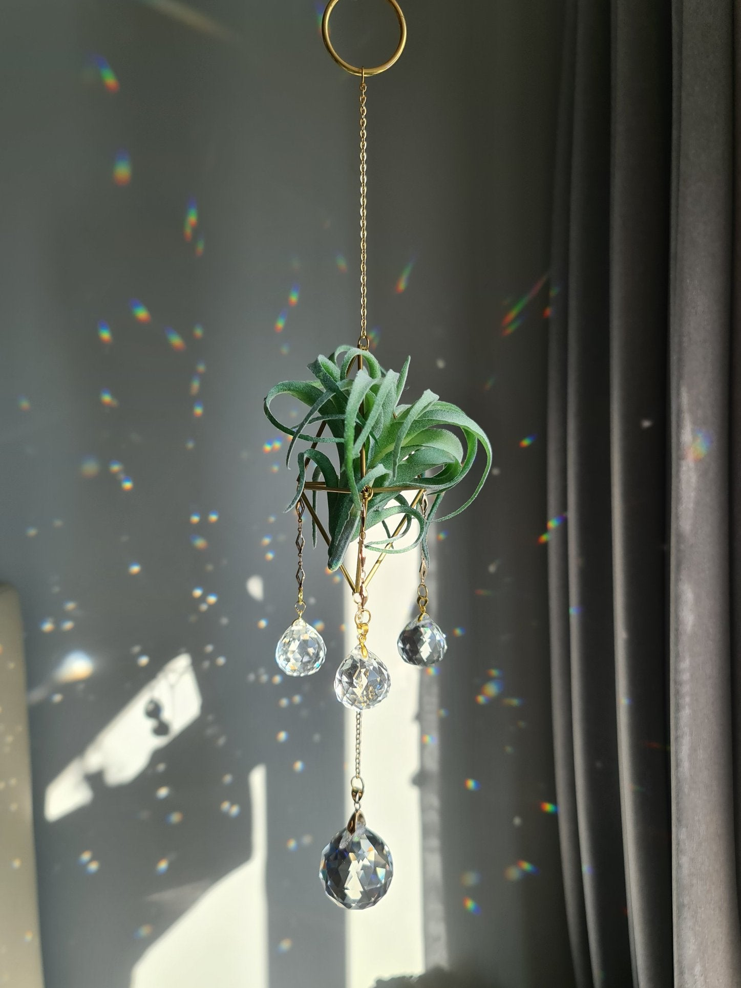 Halo (Airplant Holder) Suncatcher