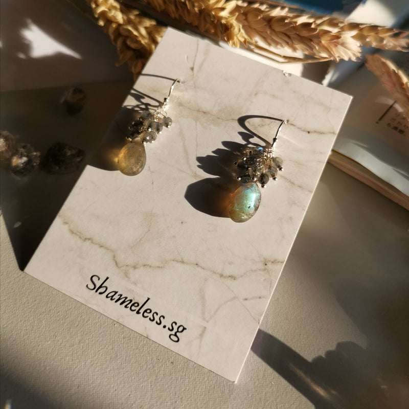 Janet Earrings In Labradorite Stones