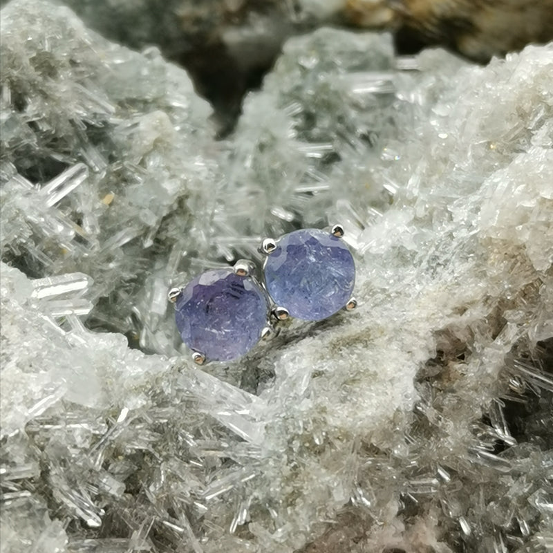 (Fearless) Prong Stud Earrings In Tanzanite