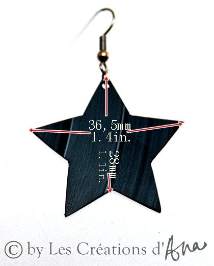 Black vinyl record star earrings