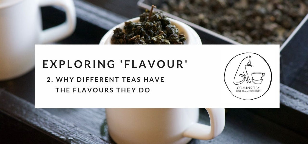 Exploring Flavour 2 : Why different teas have the flavours they do
