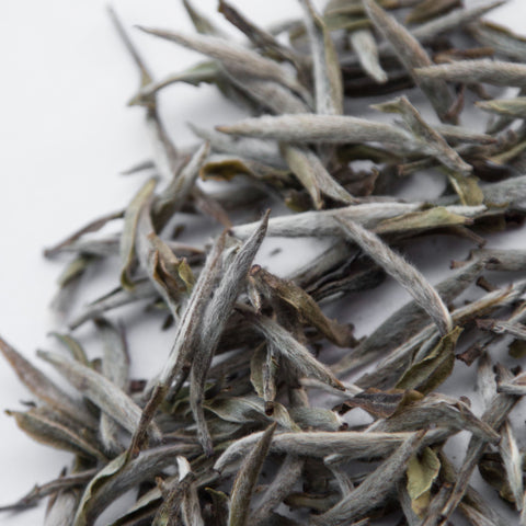 Mr Zheng's Silver Needles 'Yin Zhen' Organic Tea 2020 [Fuding, China]