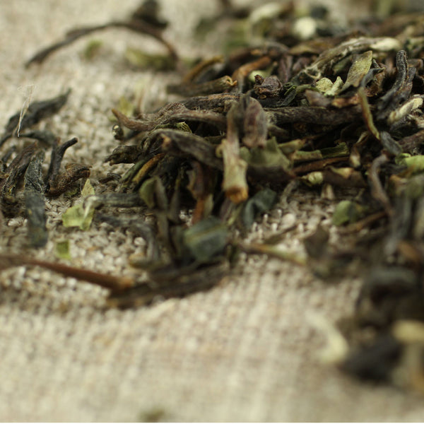 First Flush Darjeeling Tea - Comins Tea - 1