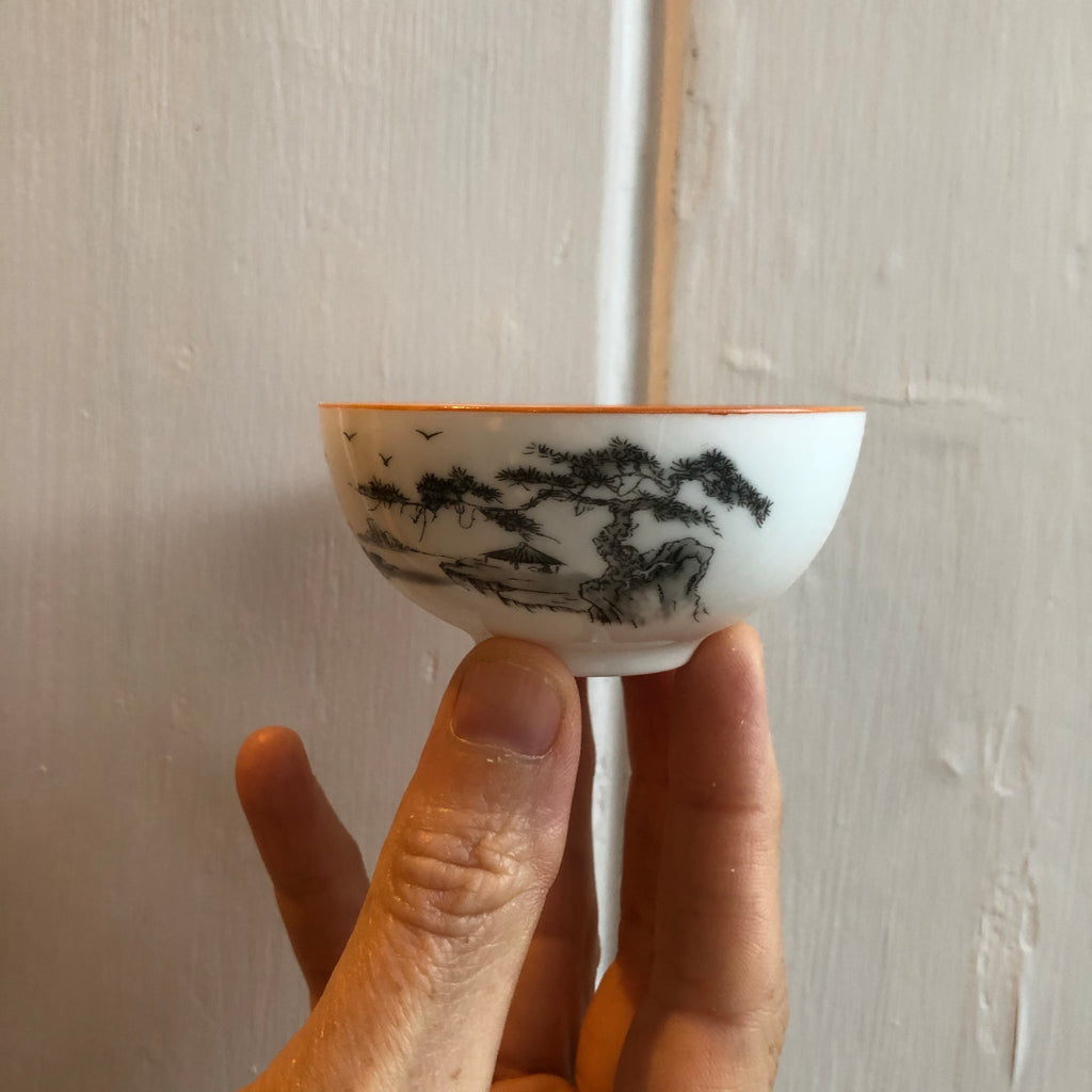 Mountain Scene Sipping Cup