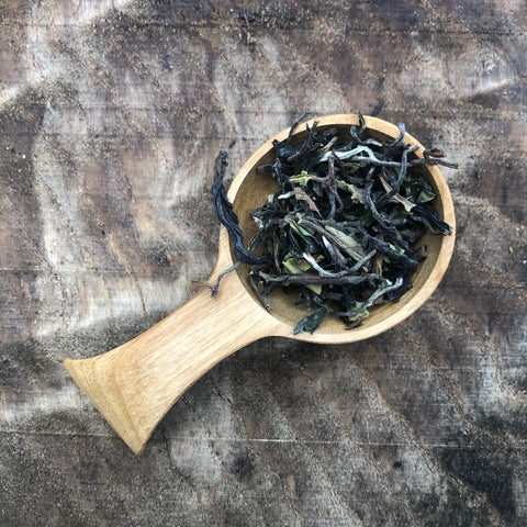 2020 First Flush Darjeeling : Ardash Muna Co-Operative : 1st Day of Plucking 2020