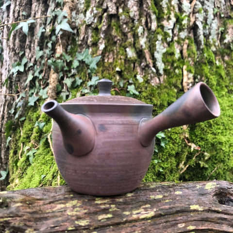 Brown/Rust Textured Tokoname Kyusu Teapot 140ml [Ceramic Strainer]