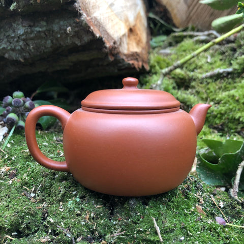 Mr Fans Fully Handmade Yixing Teapot 160ml  [清水泥 clay : ZHI YUAN JING FANG WORKSHOP]