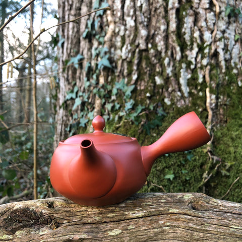 Tokoname Red Kyusu Teapot 340ml (ceramic strainer)