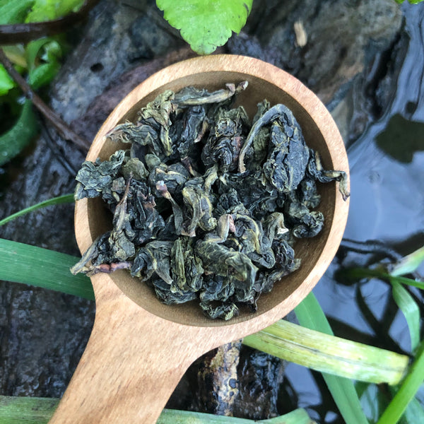 Tie Guan Yin [Qing Xiang 清香 (light or green)] Oolong Tea