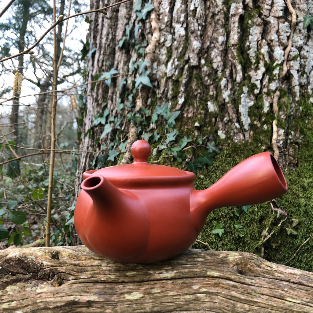 Red Tokoname Kyusu Teapot [flatter] [stainless steel mesh strainer] 360ml