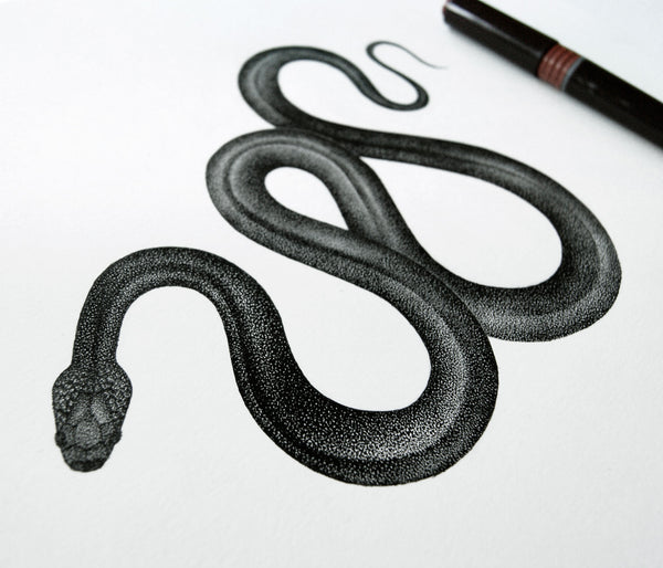 Snake - Original drawing
