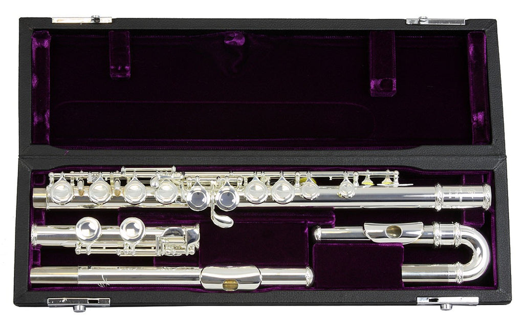 Trevor James 10X Flute Outfit with Curved & Straight Head