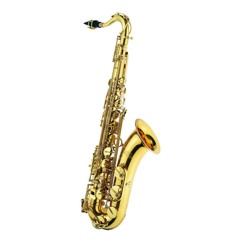 J. Michaels Tenor Saxophone Outfit