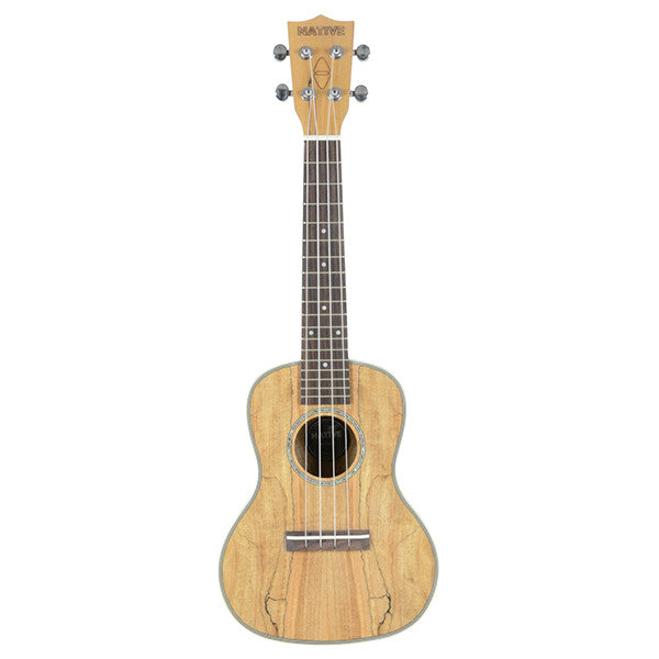 Chord Native Concert Spalted Maple Ukulele