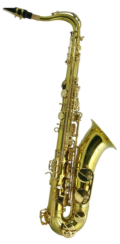 Trevor James SR Tenor Saxophone Outfit