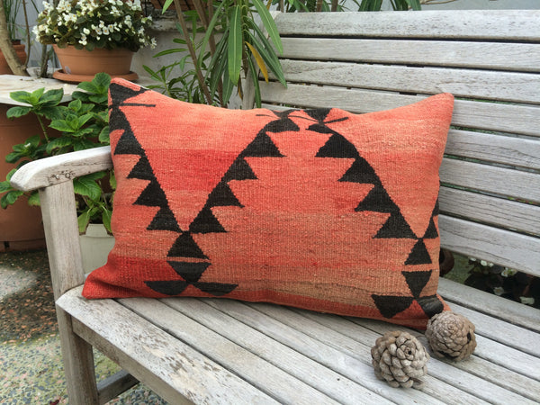 Kilim Pillow Set of 2