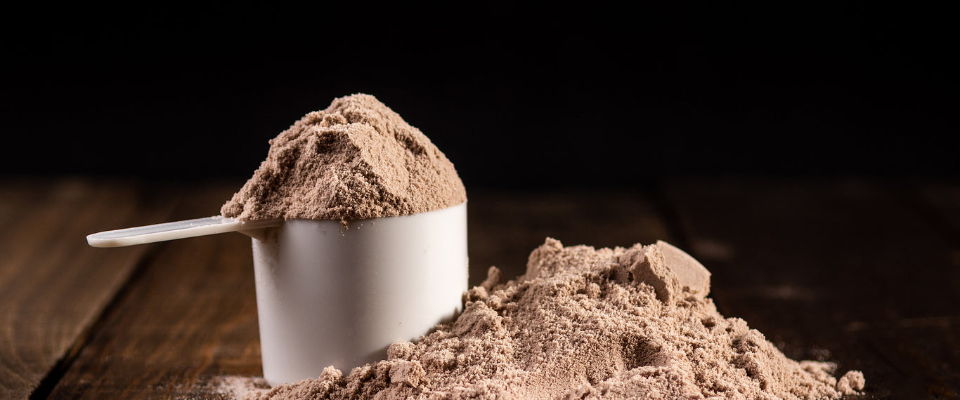 What Protein Powder Is Better For Me? How To Pick The Right Protein Product hero banner