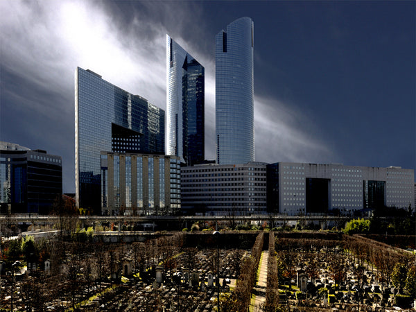 "photographie de la ""Défense 2010 4"" par Michel Roy"