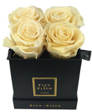 Infinity De Small Square - Roses In A Box