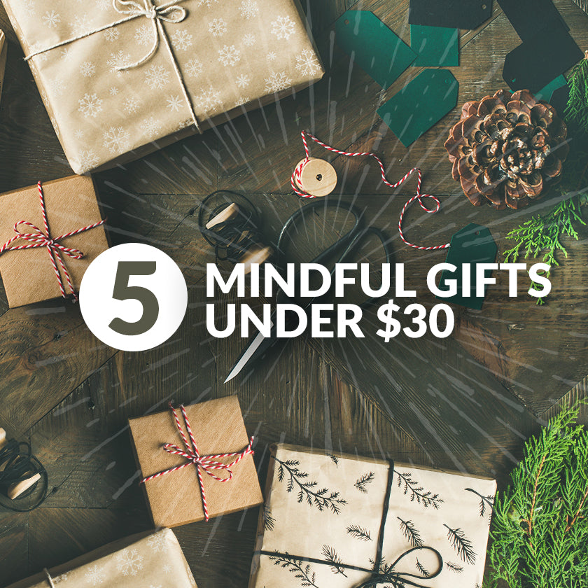 Giving Goodness: Five Mindful Gifts Under $30!