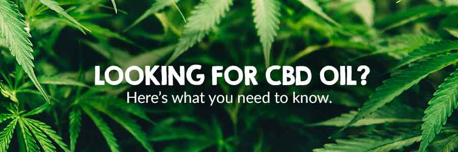Looking for CBD oil? - Goodness Me!