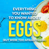 Everything You Wanted To Know About Eggs (But Were Too Afraid To Ask)