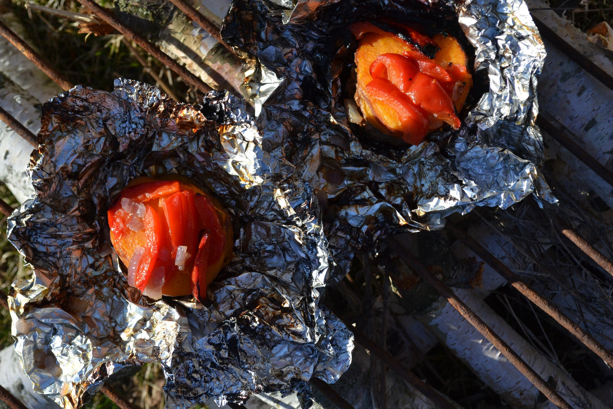 Hamburger-Hobo Sacks with Red Pepper & Onion