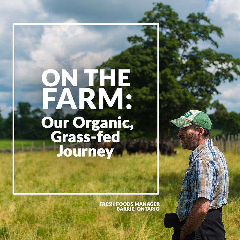 On The Farm: Our Organic, Grass-Fed Journey