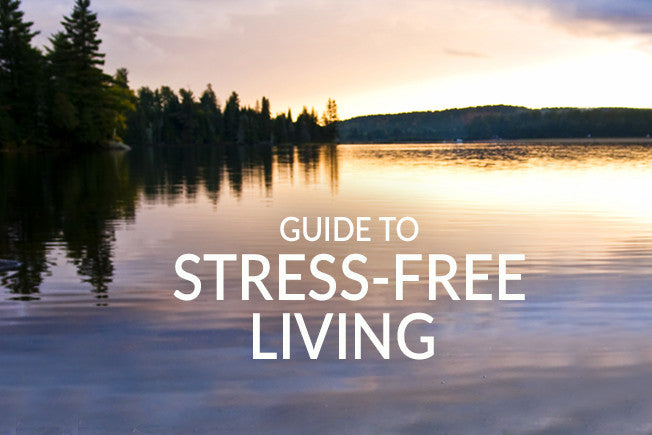 Stress-Free Living: FREE Guide with Recipes!