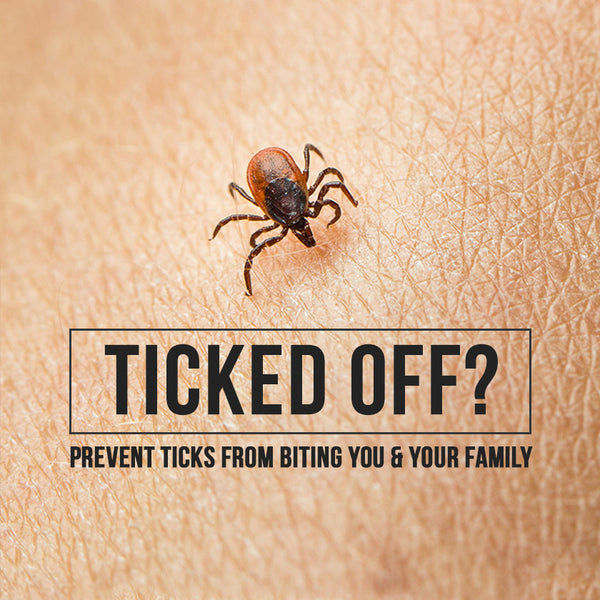 Ticked Off? Preventing Ticks From Biting You & Your Family