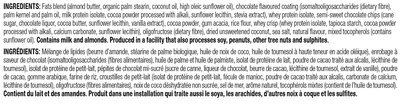 Food & Drink - Suzie's Good Fats - Coconut Chocolate Chip Bar, 39g