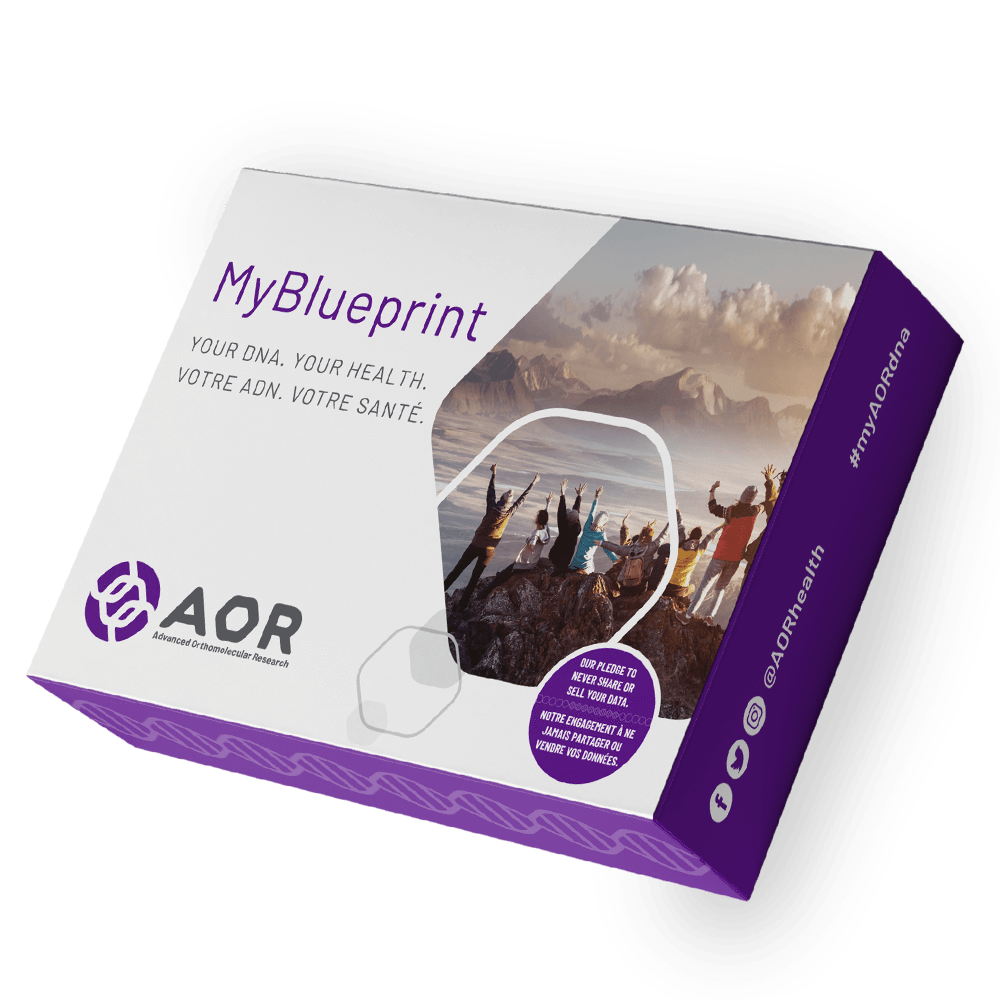 Healthy Lifestyles - AOR - MyBlueprint Kit, 1 Kit