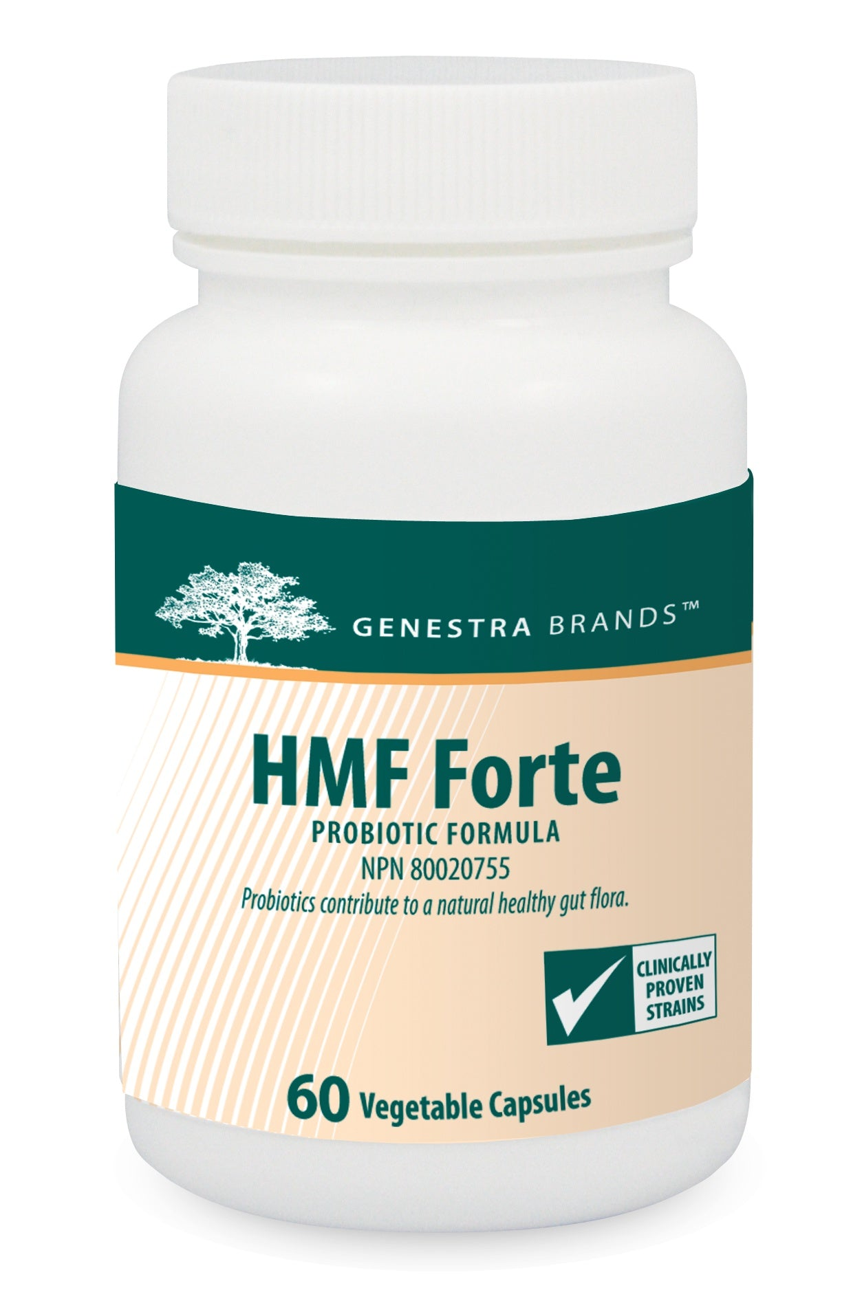 Supplements & Vitamins - Genestra - HMF Forte, 60 V-Caps