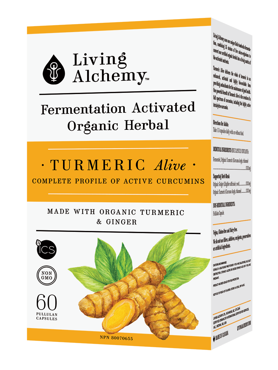 Supplements & Vitamins - Living Alchemy - Turmeric Alive Fermented, 60 Caps